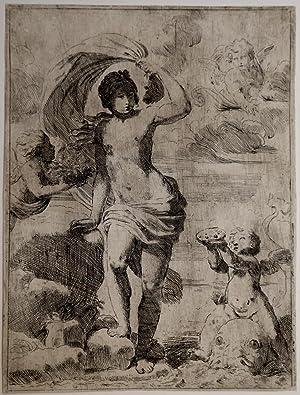 Venere sorge dal mare: Giovanni Andrea Sirani