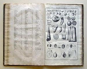 System der urweltlichen Konchylien. Durch Diagnose, Analyse: Bronn, Heinrich G