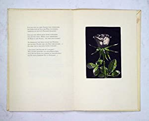 Cantus rosae paupertatis pontificae.: Hunziker, Max (Ill.) - Pierre Walter Müller