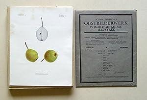 Schweizerisches Obstbilderwerk - Pomologie Suisse illustrée. Lieferung I-X.: Zschokke, ...