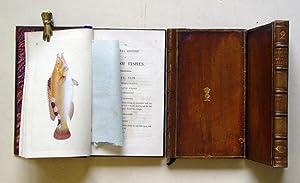 The Natural History of British Fishes, including: Donovan, Edward