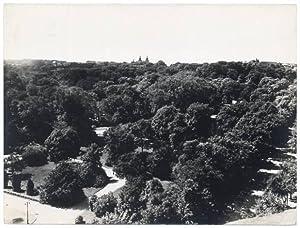Panorama Lwowa]: Ludwik Piotr Wielezynski