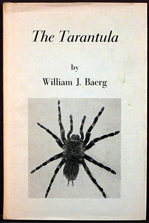The Tarantula: William J. Baerg