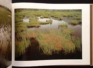 Landscapes: Hiroshi Hamaya