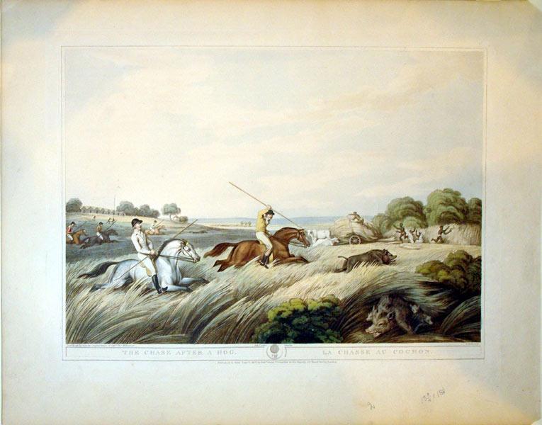 The Chase After A Hog/La Chasse Au Cochon: Capt. Thomas Williamson
