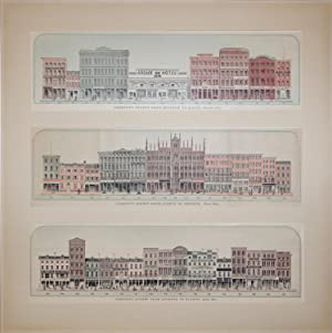 Baxter's Panoramic Business Directory [Three Views of Businesses on Chestnut Street]: DeWitt ...