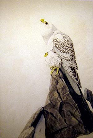 The Gray Falcon