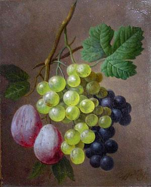 A Still Life with Grapes and Plums