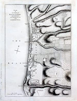 Plan of the Town of Basse Terre the Capital of Guadaloupe from an Authentic Survey