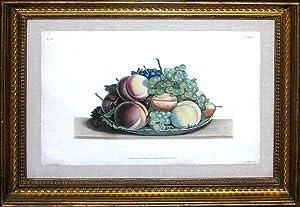 Fruit still life: Jean Louis Prevost