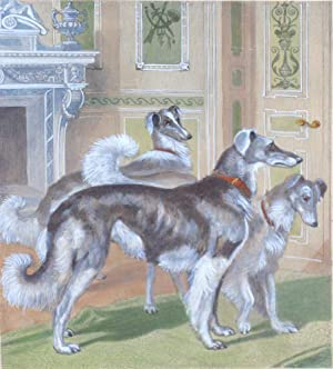 Siberian Wolfhounds from The Illustrated Book of the Dog