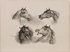 4 Horse Portraits: Carle Vernet