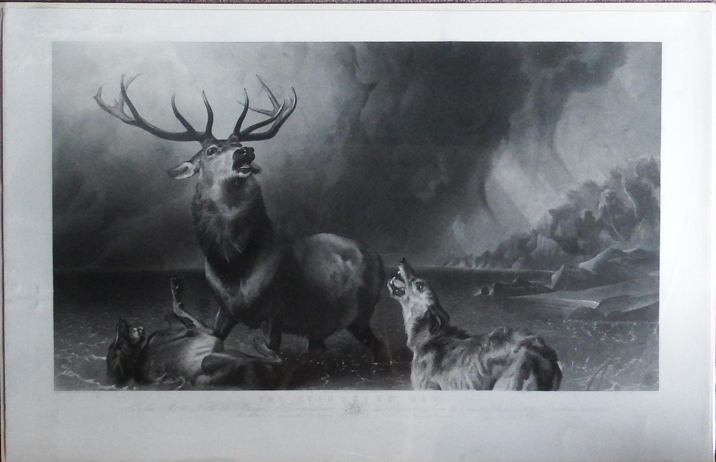 the stag hunt poem