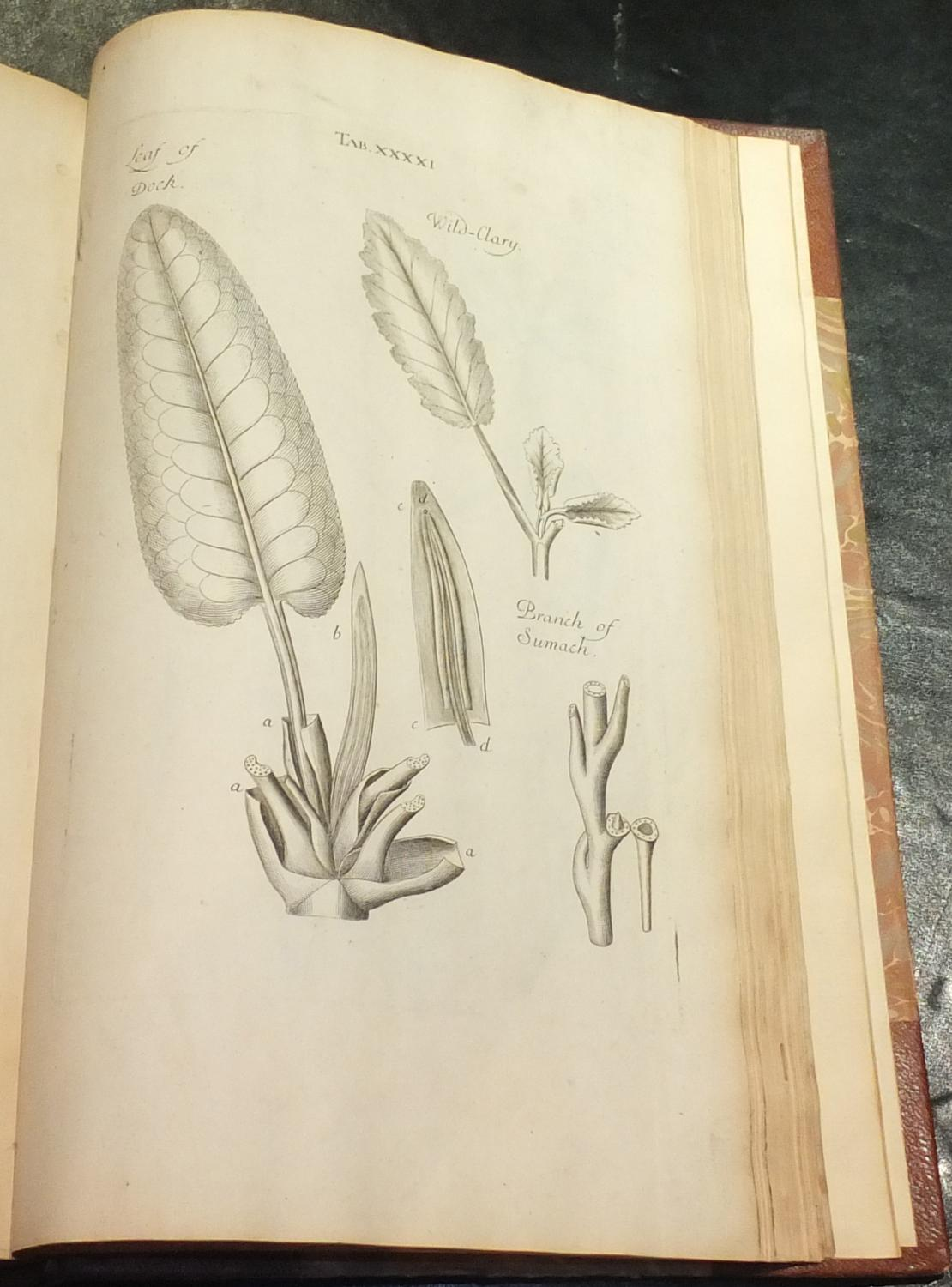 The Anatomy of Plants. With an Idea of a Philosophical History of ...