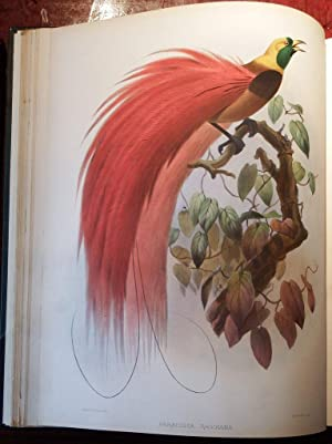 Waterbird . Other Asian Antiques Antiques Dutiful An Antique Oriental Ornithalogical Watercolour