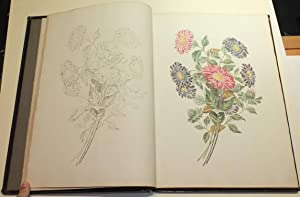 Groups of Flowers, Drawn and Accurately Coloured after Nature, with Full Directions for the Young...