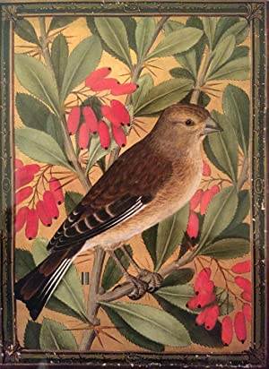 A Linnet on a Spray of Barberry.: LE MOYNE, Jacques
