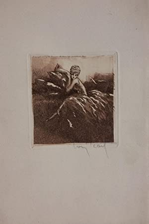 [Untitled intaglio print]; pillows