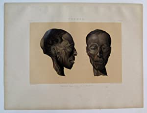 Thebes. Profile and Face of a Mummy. (Man.): BINION, Samuel Augustus