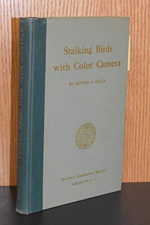Stalking Birds with Color Camera