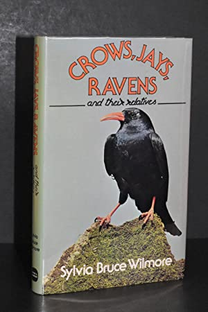 Crows, Jays, Ravens and Their Relatives