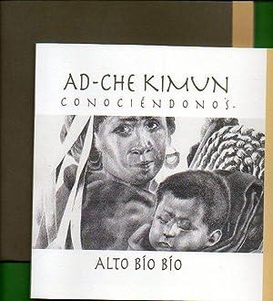 AD-CHE KIMUN. CONOCIÉNDONOS. ALTO BÍO BÍO.: Manquepi Vivanco, Jacinto.