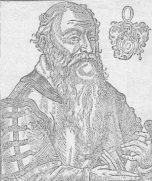Porträt. Halbfigur mit Schriftrolle in der Hand,: Albizzi (Albicius), Antonio