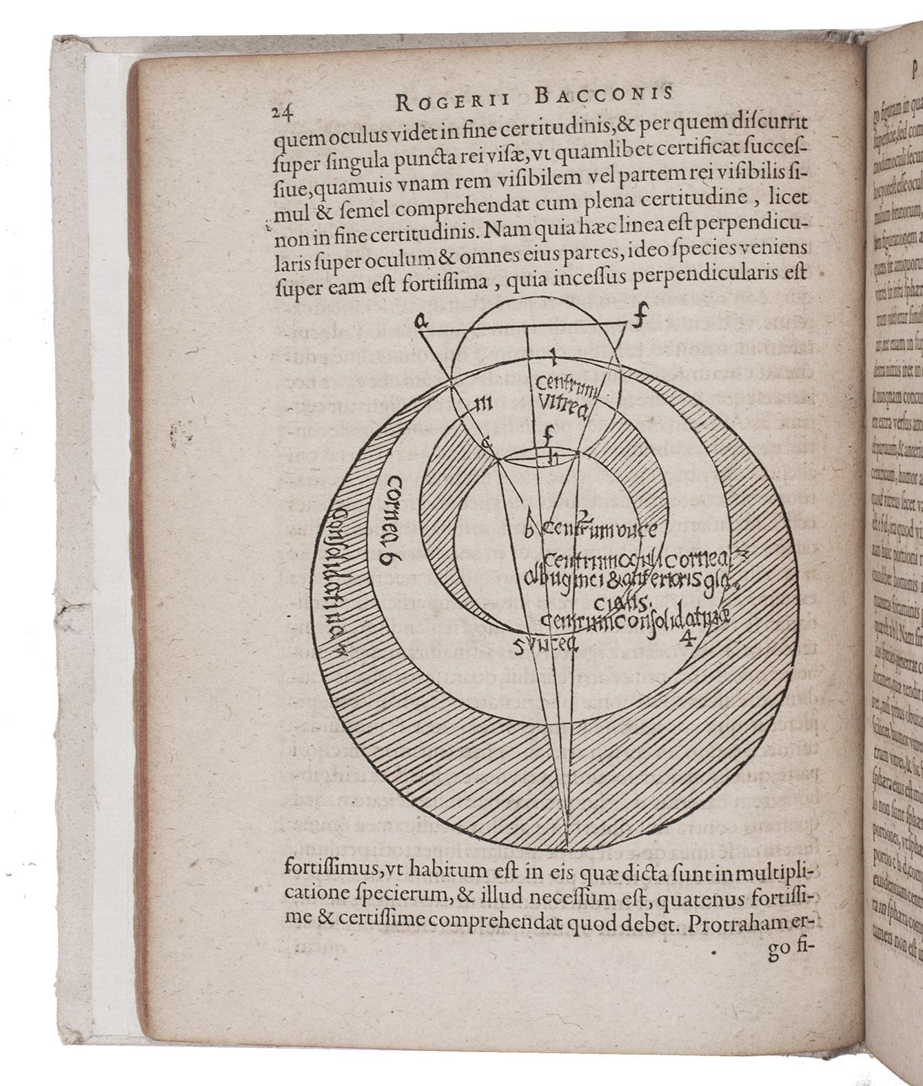 foto de viaLibri ~ Rare Books from 1585 Page 1