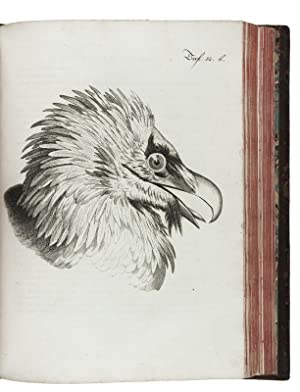 Briefe aus der Schweiz nach Hannover geschreiben,: ANDREAE, Johann Gerhard