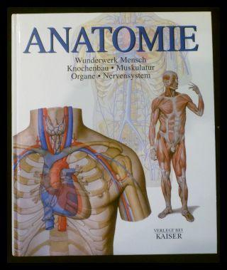 Anatomie. Wunderwerk Mensch: Knochenbau - Muskulatur - Organe ...