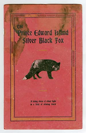 The Story of The Prince Edward Island Silver Black Fox: A living shene of silver light in a field...