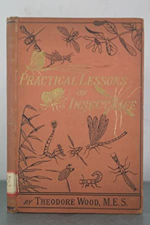 Practical Lessons in Insect Life: Wood, Theodore
