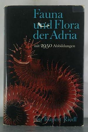 Fauna und Flora der Adria;: Ein systematischer Meeresfuhrer fur Biologen und Naturfreunde in der ...