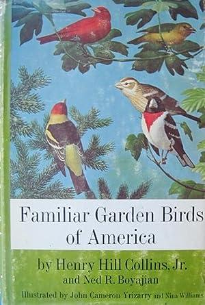 Familiar Garden Birds of America: Collins, Henry Hill