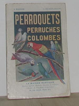 Perroquets perruches colombes