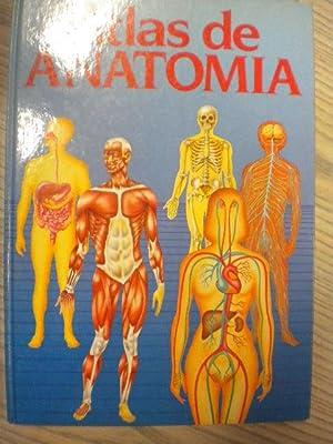 anatomia Iberlibro