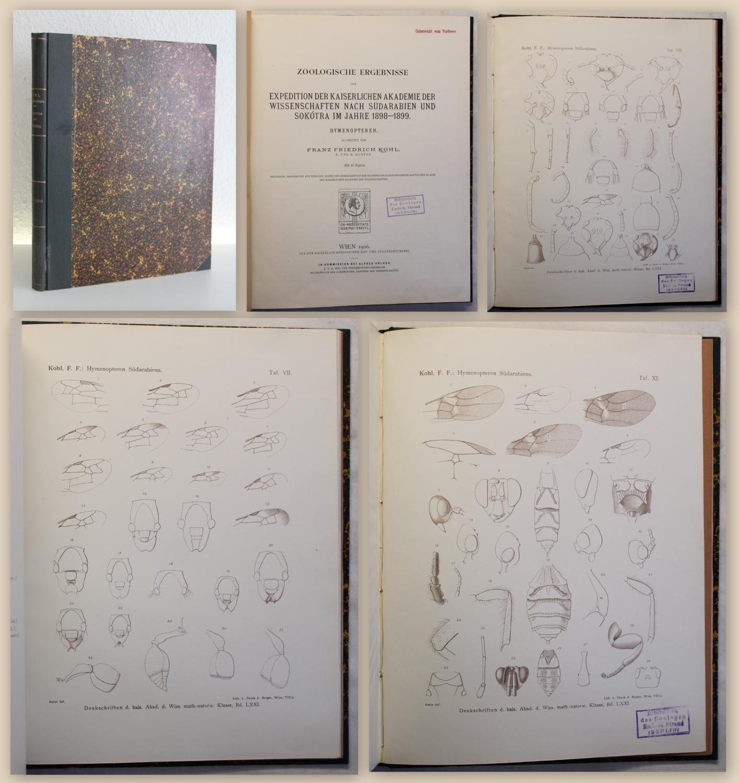 Zoologische Ergebnisse der Expedition der Kaiserlichen Akademie: Kohl, Franz Friedrich