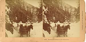 Beauties of Nature in the Klondyke Stereoview: Kilburn, B. W.