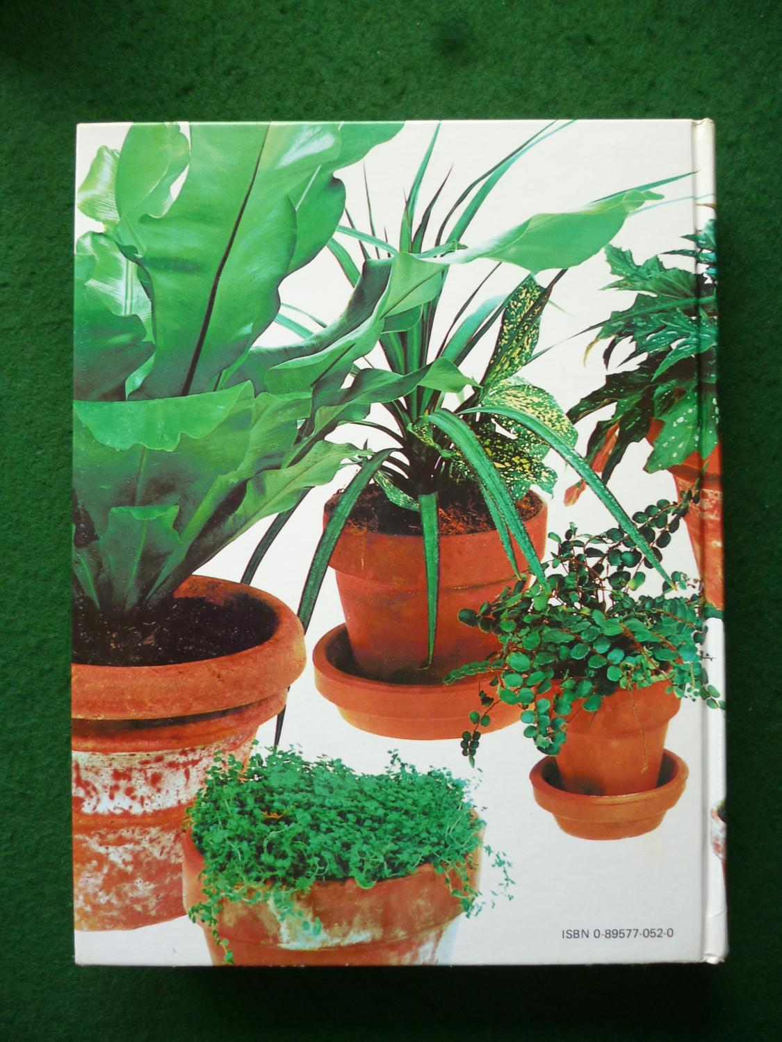 Stupendous Readers Digest Success With House Plants Interior Design Ideas Clesiryabchikinfo