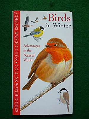 Birds In Winter (Collins Watch Guides)