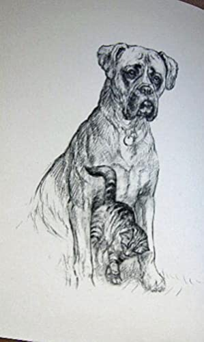 ME AND MY DOG, The Pedigree Boxer and the Alley Kitten: Barker, K. F.
