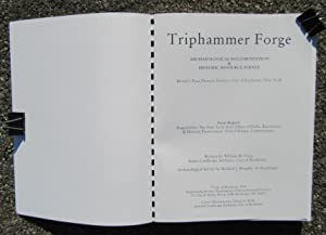 Triphammer Forge: Archaeological Documentation & Historic Resource Survey: Price, William M. ...