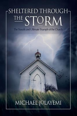 Sheltered Through the Storm: The Travails and: Jolayemi, Michael
