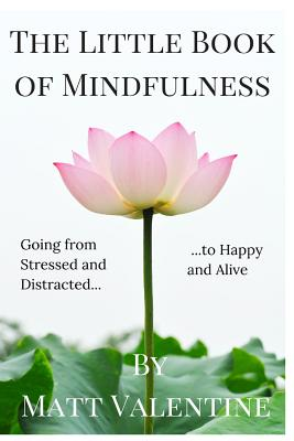 The Little Book of Mindfulness (Paperback or: Valentine, Matt