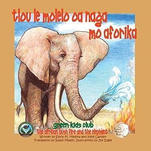 Tlou Le Molelo OA Naga Mo Aforika: Medina, Sylvia M.