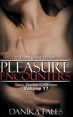 Pleasure Encounters: 11 Erotic Short Stories (Paperback: Falls, Danika