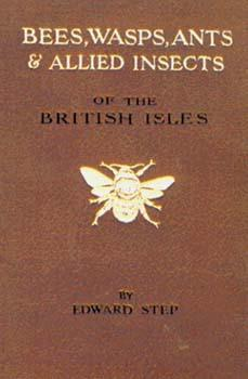 Bees, Wasps, Ants and Allied Insects: Step, Edward