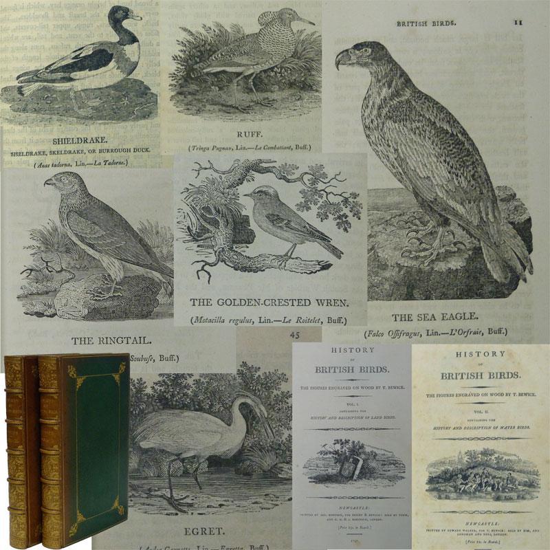A History of British Birds. Two volume set. 1797: Bewick, Thomas