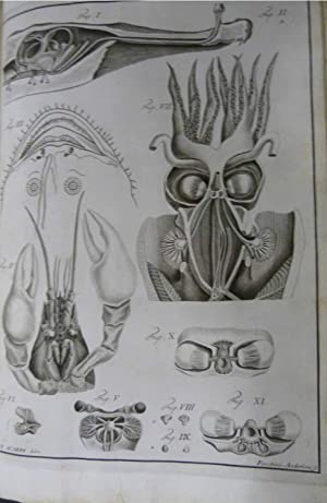 Anatomicae Disquisitiones de Auditu et Olfactu: Scarpa, Antonio; Léveillé,