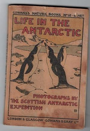 Life in the Antarctic: Bruce, W S; Rudmose-Brown, R S; Mossman, R C; Pirie, J H Harvey [photog.]